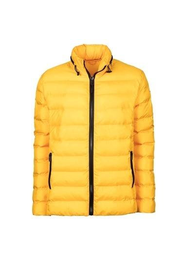 Bad Bear Mont Sarı